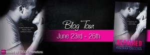 repaired blog tour